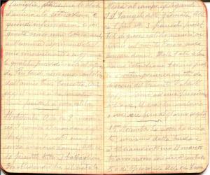 diari 14 novembre 1915