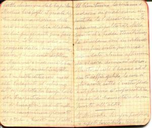 diari 15 novembre 1915