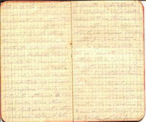 diari 21 novembre 1915