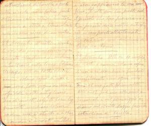 diari 22 novembre 1915