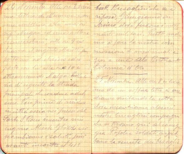 diari 25 novembre 1915